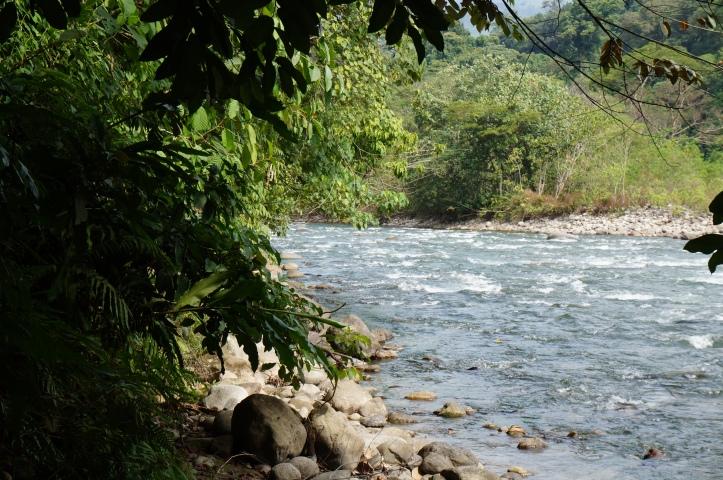 El río Alas que circunda la selva.